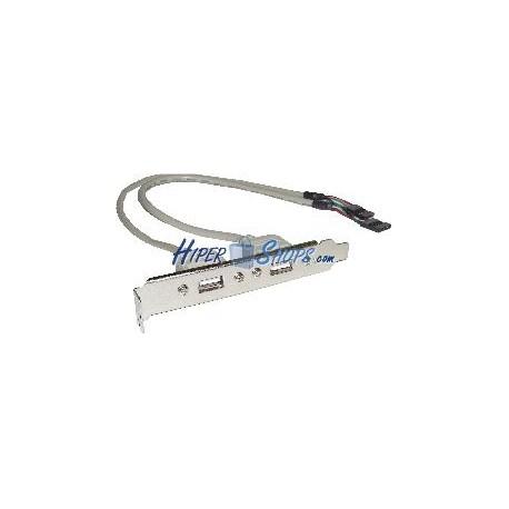 Adaptador USB de placa madre 2x5 pin a 2xAH bracket