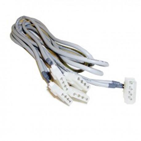 Cable Alimentación MOLEX 4P-M (5.25) a 4 x 4P-H (5.25)