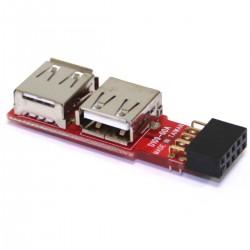 Conversor USB de placa madre 2x5 pin a 2xAH